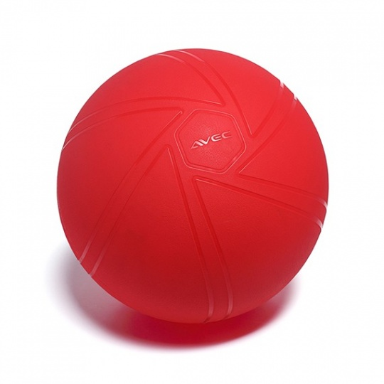 Gymnastická lopta AVEC PRO 55 cm