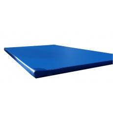 Gymnastická žinenka ALLPROLINE 200 x 100 x 8 cm T25 s protišmykovou úpravou + vystužené rohy