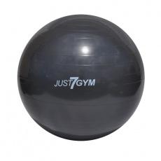 Fitness lopta Just7gym 55cm čierna i s pumpou